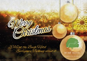 Download the Bush Hotel Christmas Brochure